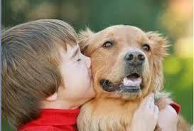 Beneficios de las terapias con animales para niños con discapacidad   Psicopedagogía   Scoop.it