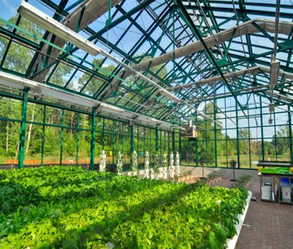 Detroit Hospital Takes a REAL Step toward Healing, Builds First Organic Hospital Greenhouse | Vertical Farm - Food Factory | Scoop.it
