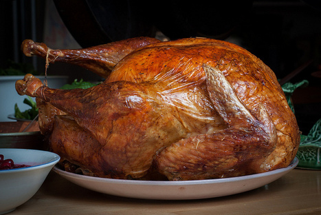 Thanksgiving, Turkeys, and Tryptophan | Foodie | Scoop.it