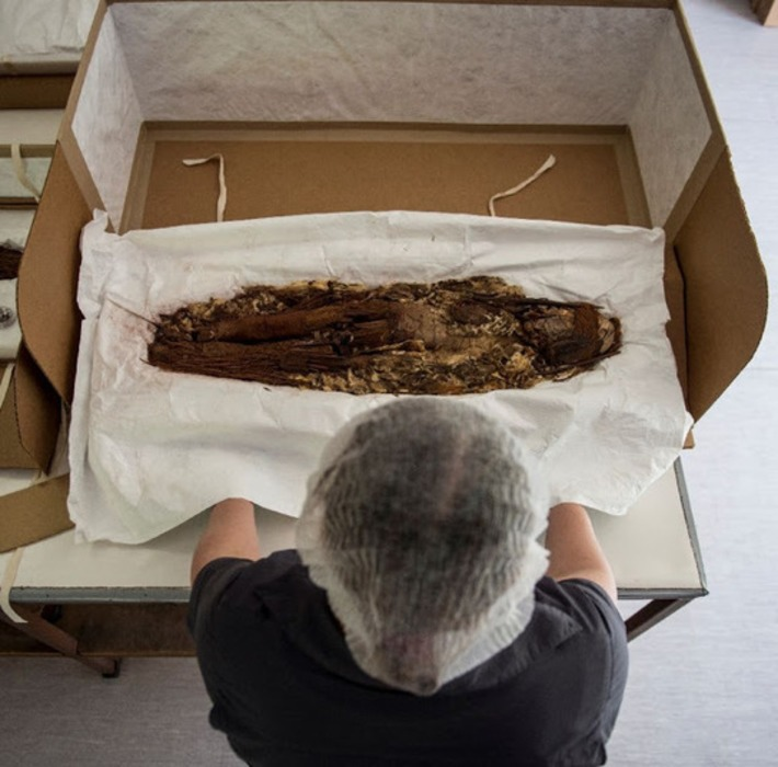 Scans unveil secrets of world's oldest mummies | The Archaeology News Netwwork | Kiosque du monde : Amériques | Scoop.it
