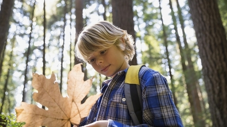 Resources on Mindfulness in Education | Projecte Globalitzador | Scoop.it