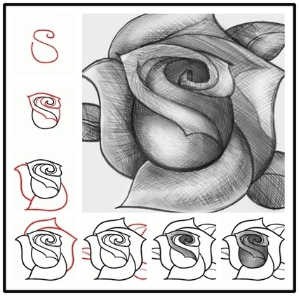 Wonderful Idea For Drawing A Beautiful Rose | Drawing and Painting Tutorials | Scoop.it