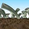 Back End Money Machine
