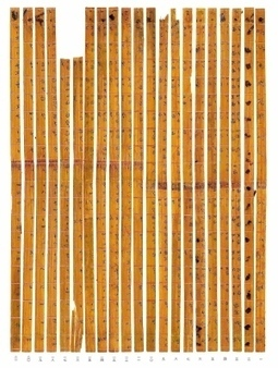 Donated Chinese bamboo strips turn out to be ancient multiplication ... | Ancient Origins of Science | Scoop.it