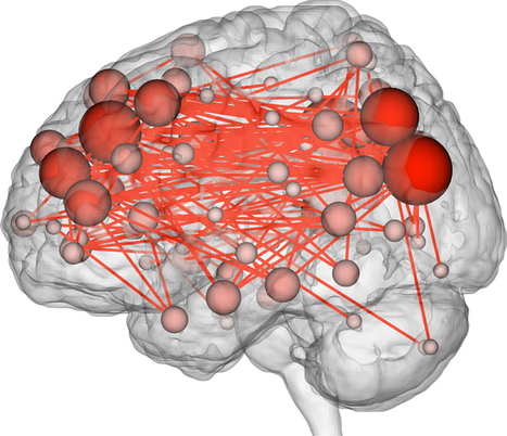 Brain activity is as unique – and identifying – as a fingerprint | Cognitive Neuroscience | Scoop.it