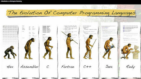 The Case for Learning C as Your First Programming Language | Learning in a Information & Knowledge Society | Scoop.it