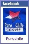 Puro Chile: puzzle | Chilean Art History and Culture | Scoop.it
