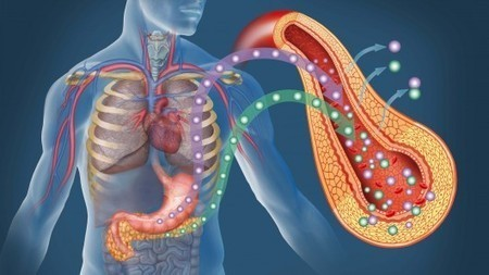 Producing insulin-secreting pancreas cells from skin cells gives hope to diabetics | Slash's Science & Technology Scoop | Scoop.it