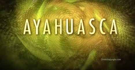 Top 8 Ayahuasca Animations on The Internet | Ayahuasca News | Scoop.it