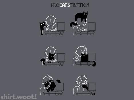 Procatstination3ckDetail.png (768x576 pixels) | Histoire de chats | Scoop.it