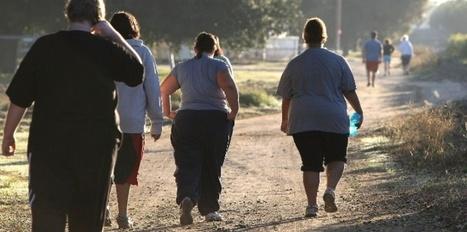 500.000 nouveaux cas de cancers par an liés à l'obésité   APMP NEWS   Scoop.it
