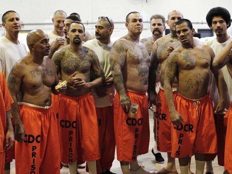 Justice Department Report Reveals The Biggest Failure Of America's Prisons | Humane Exposures: Juvenile Justice | Scoop.it