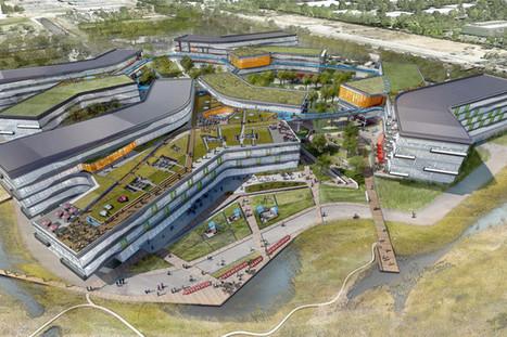 Google's New Campus Has Light, Fresh Air, Low Power Use - Architecture Lab   Avant-garde Art, Design & Rock 'n' Roll   Scoop.it
