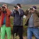 Beginners' Guide to Birding (The Big Year) | Birds and Birding | Scoop.it