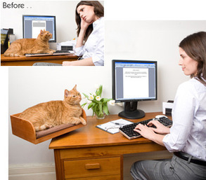 Kitt-In Box from The Refined Feline: A Unique Desktop Cat Perch / Bed | Les chats c'est pas que des connards | Scoop.it