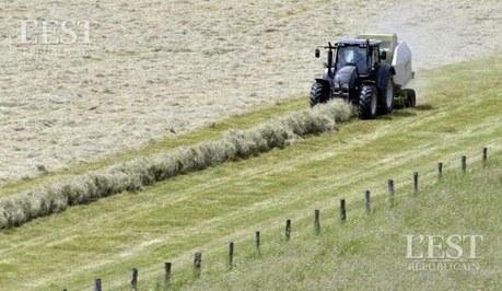 Territoire de Belfort : des clefs pour éviter le burn-out aux agriculteurs | Social Life's moods | Scoop.it