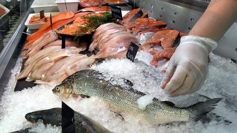 kalat horoskooppi pohjois pohjanmaa