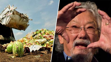 David Suzuki : Le gaspillage alimentaire est un crime contre la planète | Mr Mondialisation | Food waste | Gaspillage alimentaire | Scoop.it