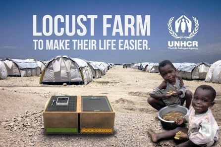 Rescue Kit Encourages Refugees To Grow Insects As Food - PSFK | eating insects = win | Scoop.it