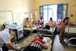 Dengue fever vaccine undergoes final trial in VietNam | Twisted Microbiology | Scoop.it