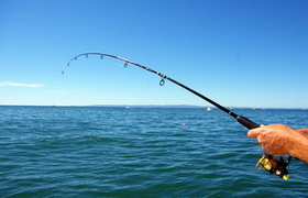 Top 5 Fishing Charters in Fernandina Beach, Florida - Yahoo! Sports | Boat News | Scoop.it