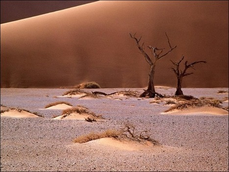 50 Beautiful Examples of Desert Photography | Interesting Photography | Scoop.it