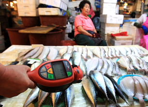 Fukushima Radiation: Is it Safe to Eat the Fish? | EcoWatch | Scoop.it