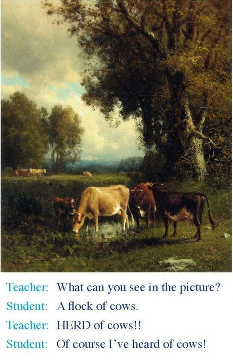 Teaching in 2017 – The  Importance of Questioning what is Normal   EFL School Owners and Managers   Scoop.it