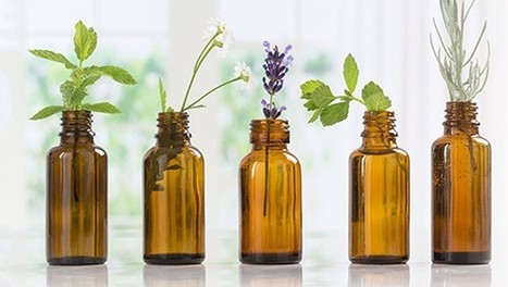 Natures Natural India - Bulk Essential oils Manufacturer and