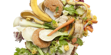 Global Food Waste Now At Shamefully High Levels | Vertical Farm - Food Factory | Scoop.it