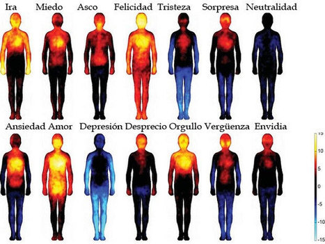 El mapa corporal de las emociones | Educación Expandida y Aumentada | Scoop.it