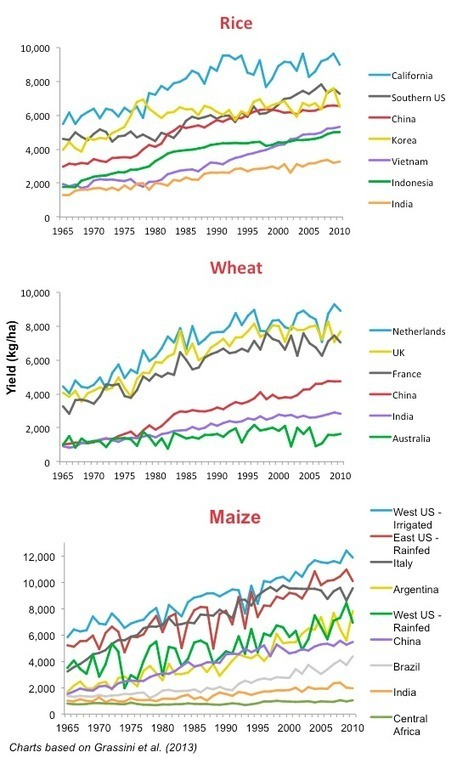 Is Precision Agriculture the Way to Peak Cropland?  -- The Unsung Hero of Agricultural Innovation   Data Science   Scoop.it