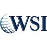 WSI Digital Marketing Consultant