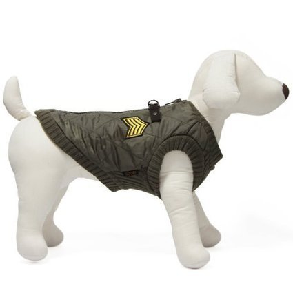 Small Dog Harnesses, Jackets & Coats   For your good boy. Gooby.