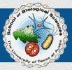 Reino Plantae | Botánica | Scoop.it