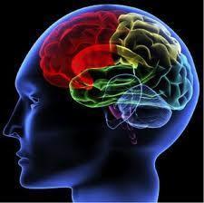 Es la hora del game-learning | Talento e inteligencia emocional | Scoop.it