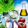 Biotecnología y Transgénicos (OMGs)