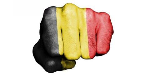 Climat : accusé de ne rien faire, l'État belge est poursuivi en justice par ses propres citoyens ! | Résistances | Scoop.it