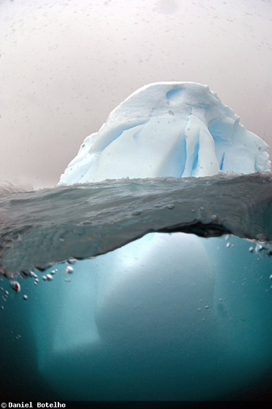 Just The Tip Of The Iceberg -  Above And Below Antarctica Through The Lens Of Daniel Botelho | SCUBA Marketing | Scoop.it