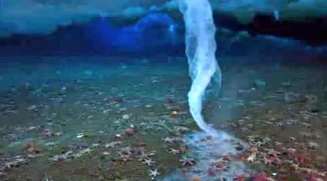 Le «doigt glacé de la mort», incroyable phénomène | The Blog's Revue by OlivierSC | Scoop.it