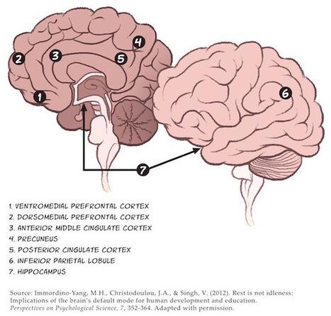 The Creative Gifts of ADHD @sbkaufman @bnpowers @lawrenceschool @ryan_masa @cdcowen | Dyslexia DiaBlogue® | Scoop.it