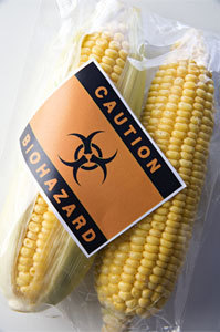 FDA ignored own scientists' warnings about GM foods | Food issues | Scoop.it