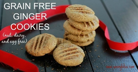 Grain Free Ginger Cookies (nut, dairy, and egg free) - | Nutrition & Recipes | Scoop.it