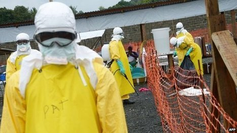 Ebola death toll reaches 2,288 - WHO | Broad Canvas | Scoop.it