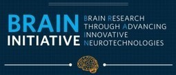 Challenges and Opportunities of the BRAIN Initiative to be Addressed in Public Hearing | Social Neuroscience Advances | Scoop.it