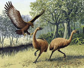 Jurassic Park Won't Happen: Dino DNA Dead   Tisanas   Scoop.it