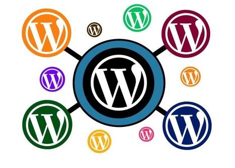 Augmenter la probabilité d'affichage de la photo de l'auteur dans les SERP avec WordPress | Communication 2.0 et réseaux sociaux | Scoop.it