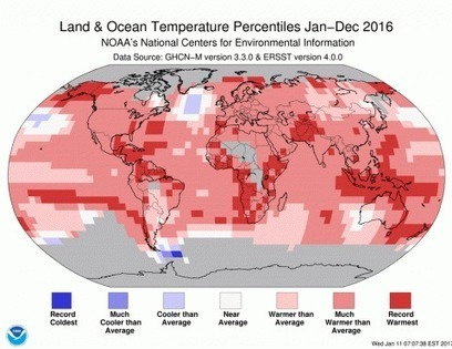 U.S. scientists officially declare 2016 the hottest year on record. That makes three in a row. | GMOs & FOOD, WATER & SOIL MATTERS | Scoop.it