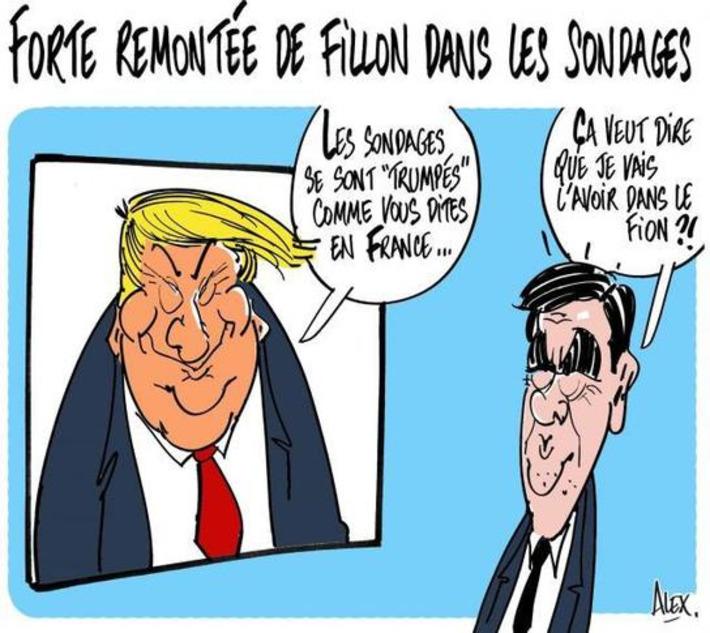 Forte remontée de Fillon dans les sondages | Baie d'humour | Scoop.it