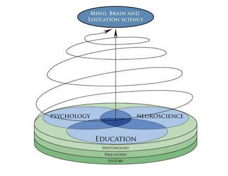 neuroeducation, cognitive neuroscience, teaching, psychology, learning, pedagogy | Mind, Brain, and Teaching | Scoop.it